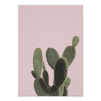 Prickly Pear Cactus and Pink Poster