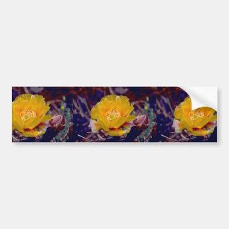 Prickly Pear Cactus Bumper Stickers