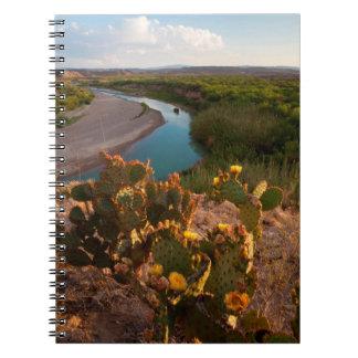 Prickly Pear Cactus (Opuntia Sp.) Note Books