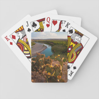 Prickly Pear Cactus (Opuntia Sp.) Playing Cards