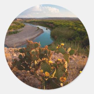 Prickly Pear Cactus (Opuntia Sp.) Round Sticker