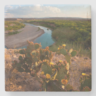 Prickly Pear Cactus (Opuntia Sp.) Stone Coaster