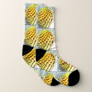 Prickly Pear  Cactus Paddle Unisex Socks 1