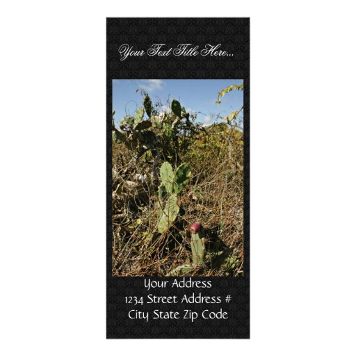Prickly pear cactus rack card design