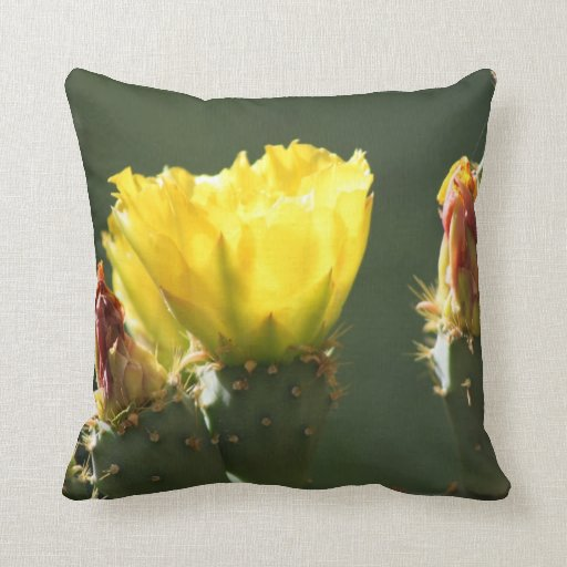 Prickly Pear / Opuntia Blossom Pillow