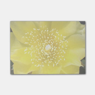 Prickly Pear Yellow Cactus Flower Post-it® Notes
