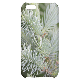 Prickly Pine iPhone 5C Cover