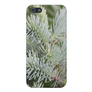 Prickly Pine iPhone 5/5S Cover