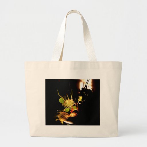 Prickly plants bags