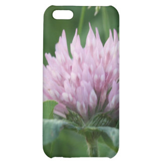 Prickly Purple Cover For iPhone 5C