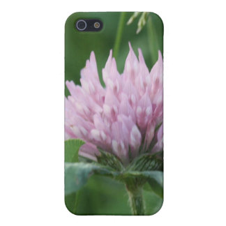 Prickly Purple iPhone 5/5S Covers