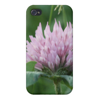 Prickly Purple iPhone 4/4S Covers