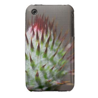 Prickly Wildflower Bud iPhone 3 Covers
