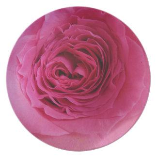 Prideful Pink Rose Plate