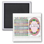 Primary/Adult Tooth Eruption Timetable Square Magnet
