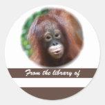 Primate Lover Book Sticker Stickers