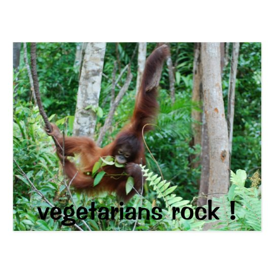 Primate Vegetarians Rock ! Postcard