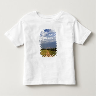 Primitive dirt road across the northern toddler T-Shirt
