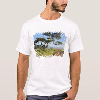 Primitive dirt road and acacia tree, Lake Nakuru T-Shirt