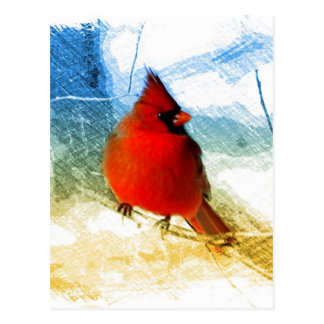Primitive western country christmas red cardinal postcard