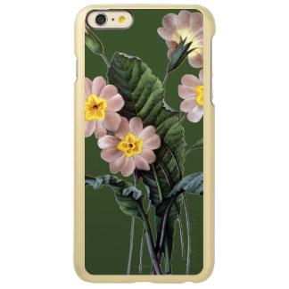 Primrose (Primula Aucalis)
