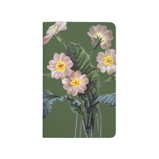 Primrose (Primula Aucalis) Journal