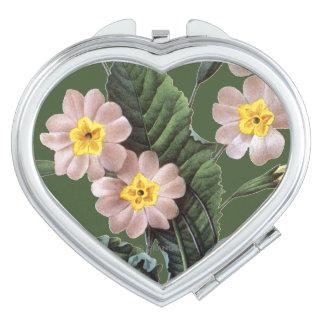 Primrose (Primula Aucalis) Mirror For Makeup