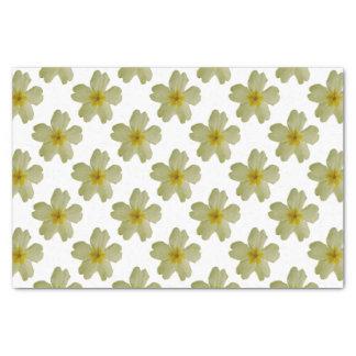 Primrose Tissue Paper