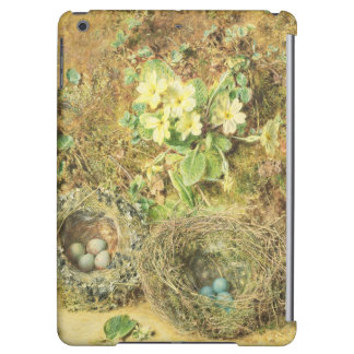Primroses and Birds' Nests