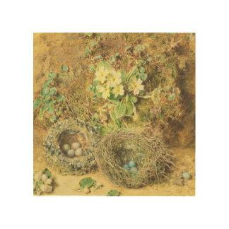 Primroses and Birds' Nests Wood Print