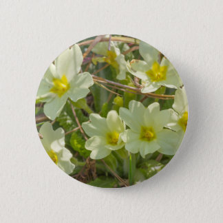 primroses in the meadow in spring 6 cm round badge