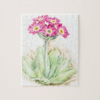 Primula pink watercolor art jigsaw puzzle
