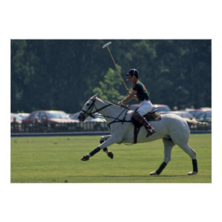 Prince Charles Playing Polo at Windsor Poster