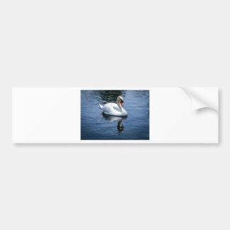 Prince Charming Bumper Sticker