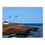 Prince Edward Island Lighthouse Postcard