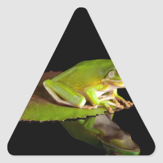 Prince frog triangle sticker