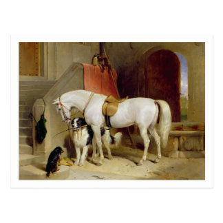 Prince George's Favourites (oil on canvas) Postcard