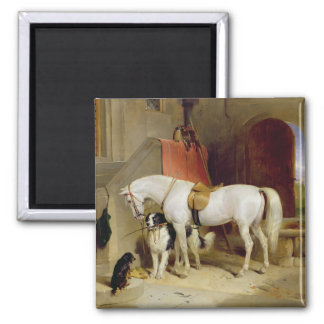 Prince George's Favourites (oil on canvas) Square Magnet