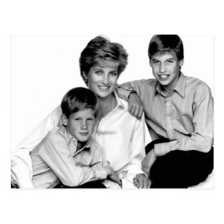Princess Diana and sons Postcard