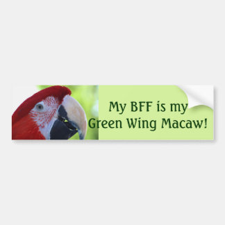 Princess Green Wing Macaw Bumper Sticker