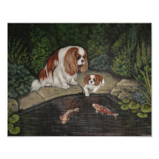Princess & the frog: Cavalier King Charles Spaniel Photograph