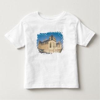 Principal facade and the south facade toddler T-Shirt
