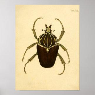 "Print ""Entomologie I """
