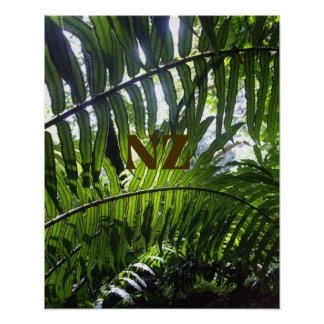 Print of ferns in sunshine with NZ superimposed