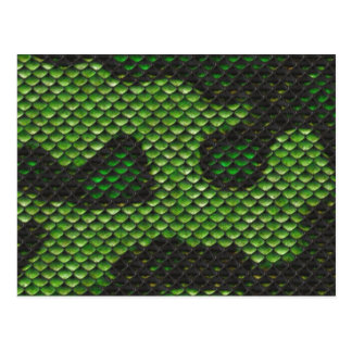 Printed Fake Green Snake Skin Camo Style Design Postcard