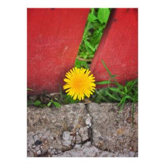 Prisoner flower personalized invites