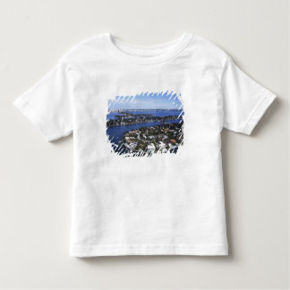 Private Island homes of Biscayne Bay, Star Toddler T-Shirt