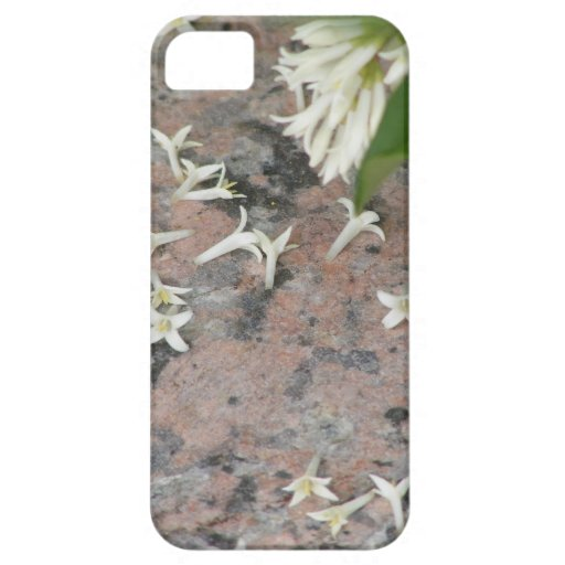 Privet Blossoms on Granite iPhone 5 Case