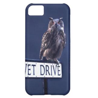 Privet Drive 2 iPhone 5C Case