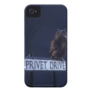 Privet Drive iPhone 4 Cases